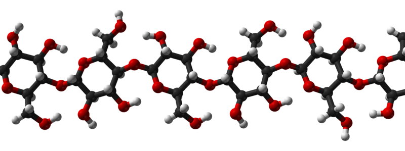 cellulose molecule...this public-domain image created by Ben Mills and found on Wikipedia